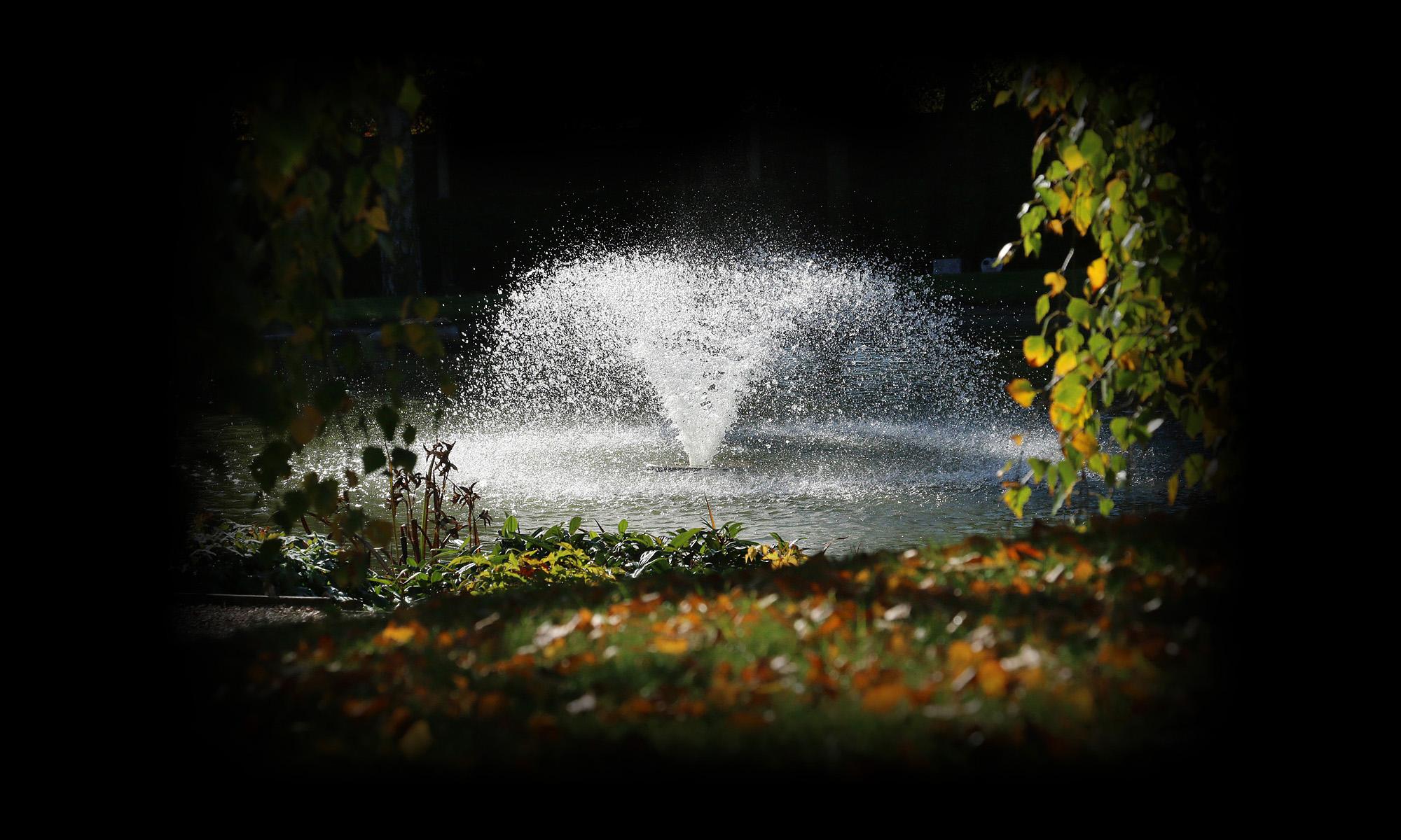 Portchester Memorial Gardens